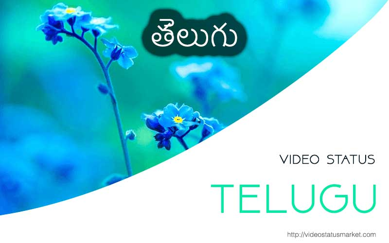 telugu-status.jpg